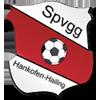 Wappen von SpVgg Hankofen-Hailing