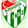 Wappen von Bursaspor
