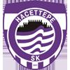 Wappen von Hacettepe SK