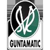 Wappen von SV Ried
