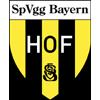 Wappen von SpVgg Bayern Hof