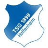 Wappen von TSG 1899 Hoffenheim