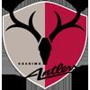 Wappen von Kashima Antlers