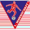 Wappen von 1. FC Rielasingen-Arlen