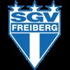 Wappen von SGV Freiberg