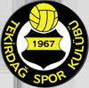 Wappen von Tekirdagspor