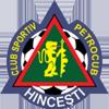 Wappen von FC Petrocub
