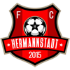 Wappen von AFC Hermannstadt