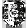 Logo von TSV Karlburg