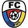 Wappen von FC Grimma