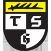 Wappen von TSG Balingen