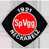 Wappen von SpVgg Neckarelz