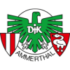Logo von DJK Ammerthal