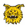 Wappen von Ilves Tampere