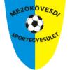 Logo von Mezokovesd Zsory